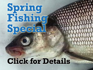 spring fishing special